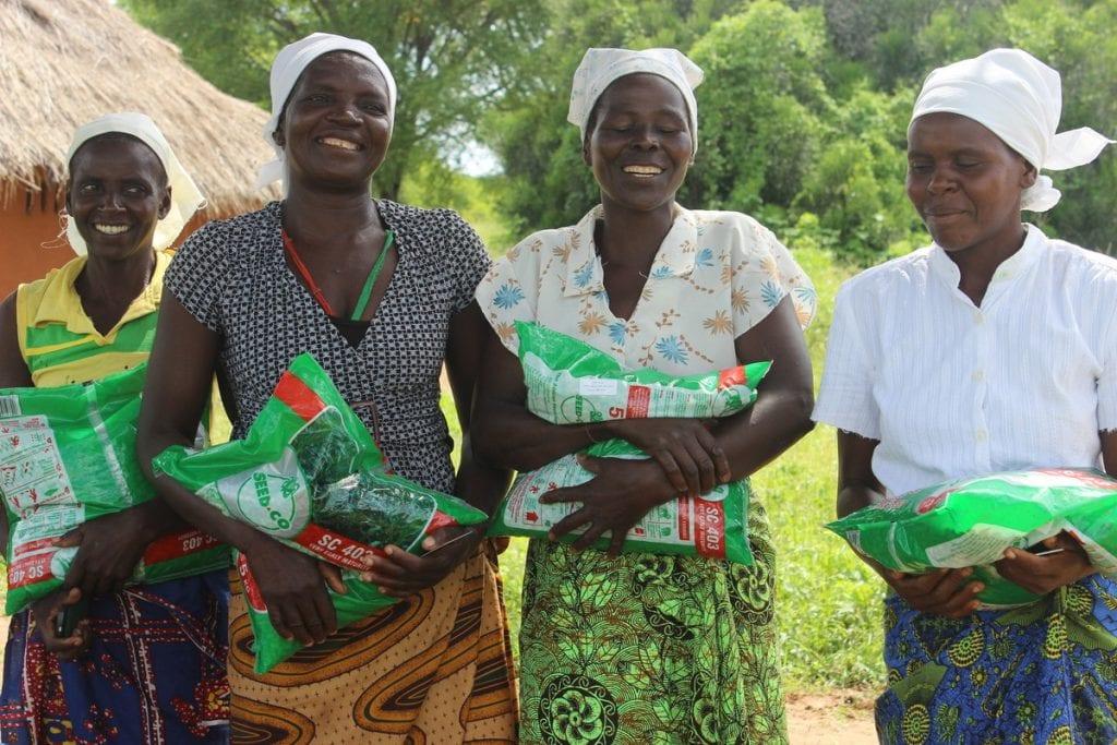 ActionAid zet zich in voor boerinnen in Zimbabwe